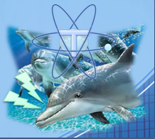 Delfin hablador