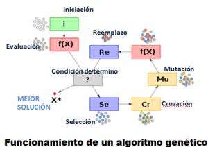 Funcionamiento algoritmo genético