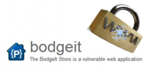 Bodgeit, aplicacion vulnerable web