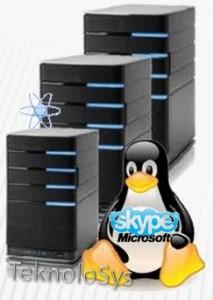 Microsoft usa Servidores Linux